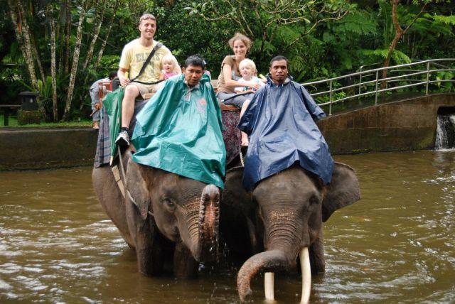 Elefant tur