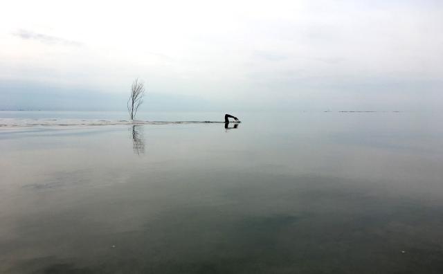 Vadehavet copy
